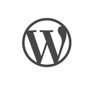 ecommerce-brains-wordpress-c3