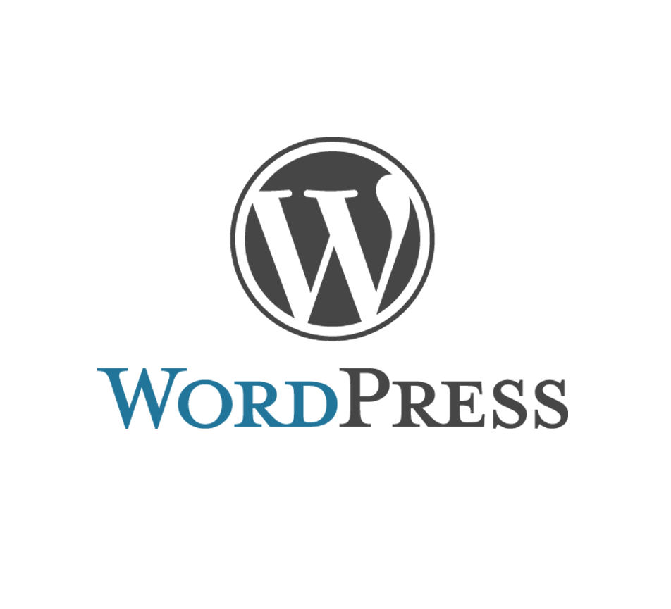 ecommerce-brains-wordpress